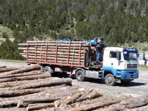 Tot Boscos Andorra líders en venda de llenya, venda de carbó, cura de boscos, neteja de rius, etc. https://totboscos.com/ Llenya a Tot Boscos. Venda de llenya tot l'any La nostra família es dedica a la venda de llenya des de fa més de 20 anys. https://totboscos.com/ També tenim carbó per a barbacoes, carbó per a estufes, pèl·let per a calderes de biomassa, escura-xemeneies per a treure el sutge de la llar de foc i les estufes i llenya. https://totboscos.com/ A Tot Boscos tenim llenya a cobert per tal que pugueu trobar llenya seca i eixuta encara que plogui o que hagi plogut. A Tot Boscos disposem d'un servei de distribució per a professionals de l'hostaleria o grans consumidors. Realitzem de forma regular diferents rutes des del nostre magatzem central, d'aquesta manera podem servir a tots els nostres clients de forma regular i sense incrementar el preu del producte, ja que en molts casos no poden emmagatzemar grans quantitats de carbó. Podeu demanar informació sense compromís o sol·licitar una visita comercial. https://totboscos.com/ Què és i com funciona una estufa de pèl·let? https://totboscos.com/ El pèl·let és un tipus de combustible granulat fet a base de residus de fusta. És un sistema ecològic d'escalf, ja que està fet amb materials biodegradables. A més, és còmode i net de transportar. Una estufa de pèl·let és aparell de calefacció molt senzill d'utilitzar. Té un dipòsit per on es tiren els pèl·lets i quan l'estufa es posa en funcionament, un sistema intern els trasllada a la cambra de combustió per cremar. En cremar-se, s'emet energia calòrica que escalfa l'habitació o l'espai allà on s'ha instal·lat l'estufa. El fum que genera s'expulsa a través d'una sortida posterior i els expulsa a l'exterior de l'habitatge. https://totboscos.com/